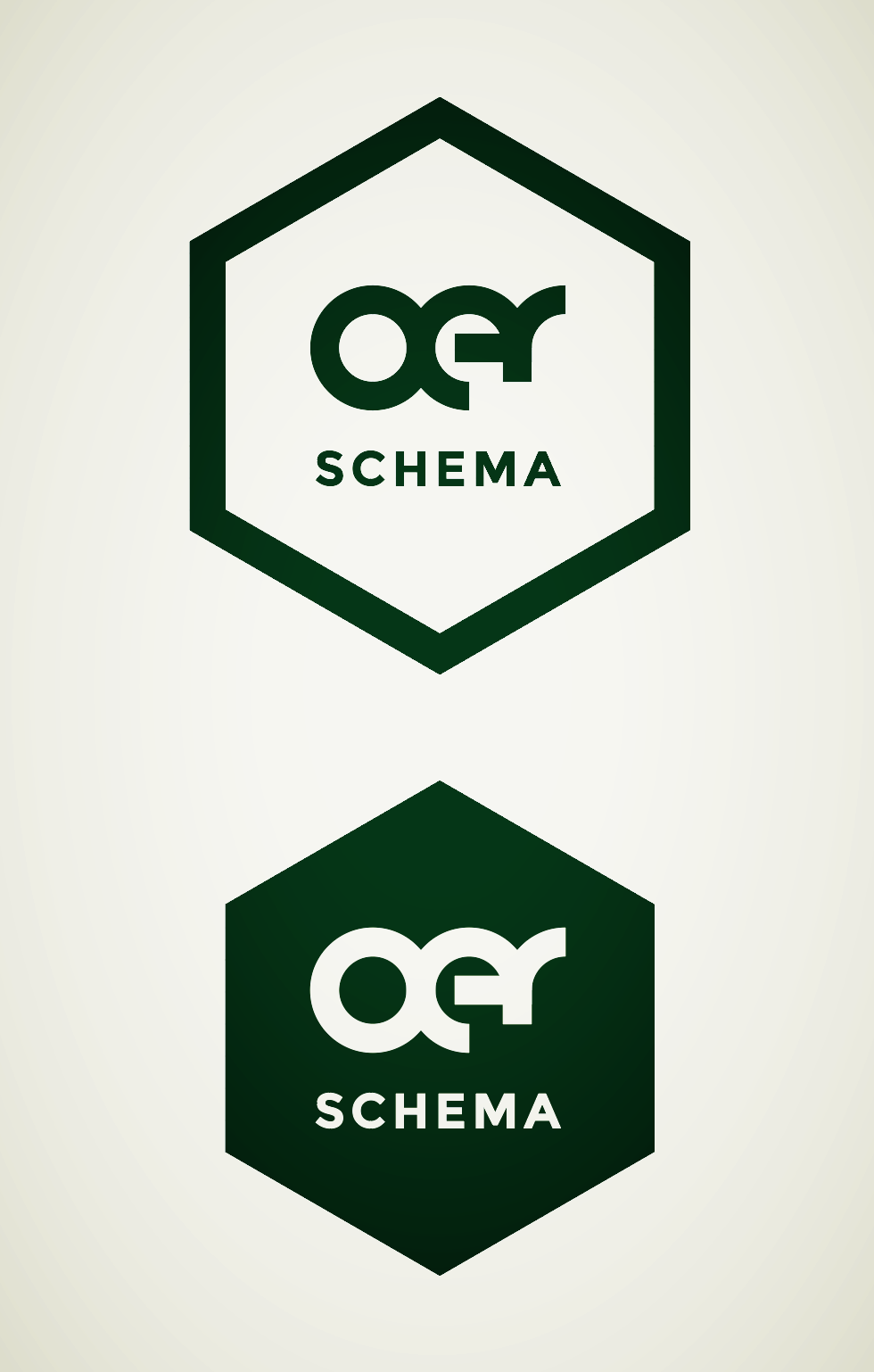 OER Schema logo with hex background